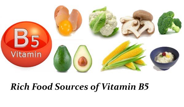 rich-food-sources-of-vitamin-b5